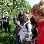 E. Westphal erklärt vor einem blühenden Apfelbaum