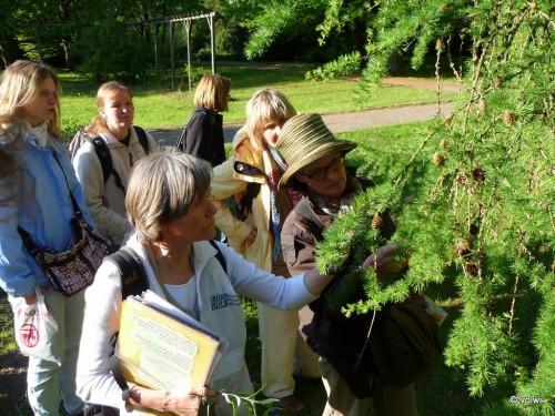 E. Westphal mit Besucherinnen vor einem Lärchenzweig