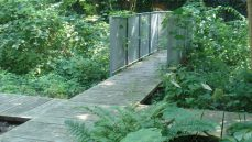 Weg aus Holzdielen