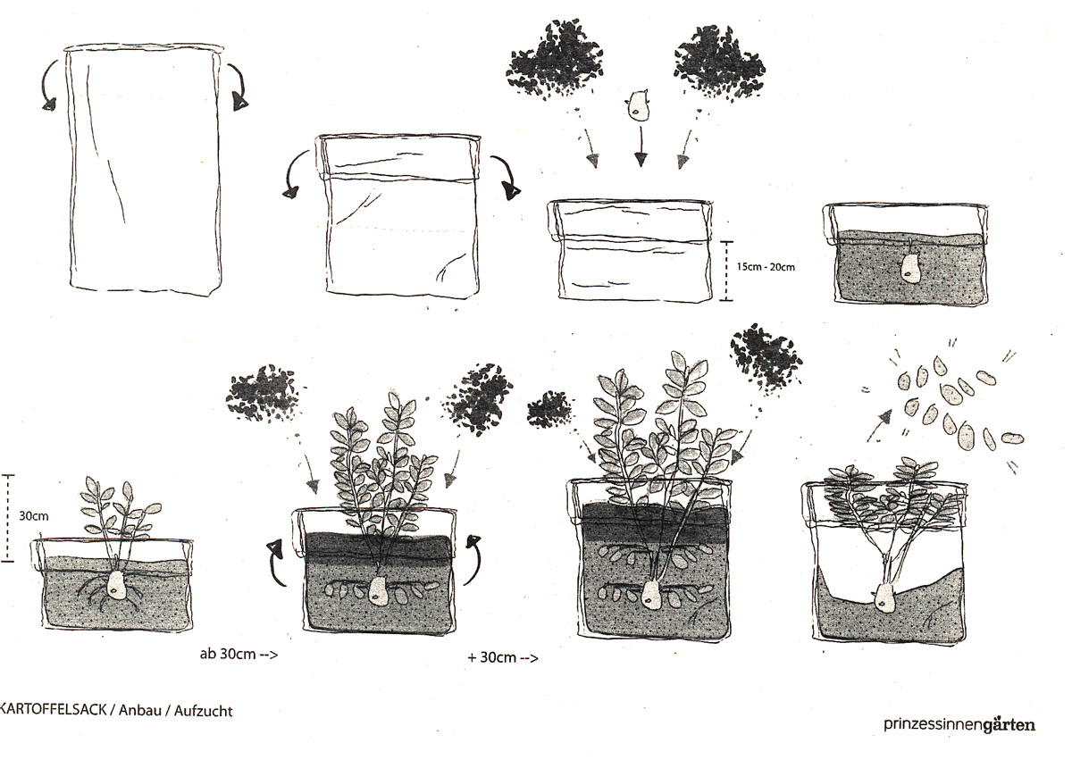 zeichnung prinzessinengarten gr ne liga berlin e v. Black Bedroom Furniture Sets. Home Design Ideas