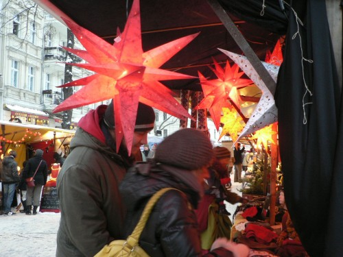 Weihnachtssterne auf dem Adventsökomarkt am Kollwitzplatz