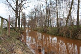 kohlerundbrief_2013-02-14_bild