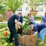 Gartenarbeit-im-Team