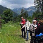 Wandermeilen der Gesundheit - unterwegs in Österreich