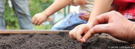 Kinder sähen Samen aus