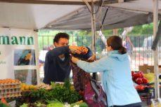 frisches Obst und Gemüse beim Naturhof Gaßmann - gleich in die Einkaufstasche