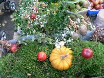 Kürbis und Früchte auf dem Ökomarkt