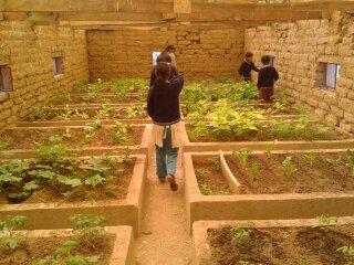 Bolivien Schulgarten