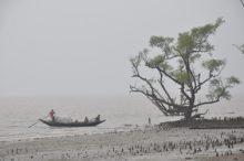 Küste Asien Meeresspiegelanstieg