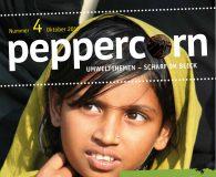 Ansicht Titelseite Zeitschrift Peppercorn Nr. 4