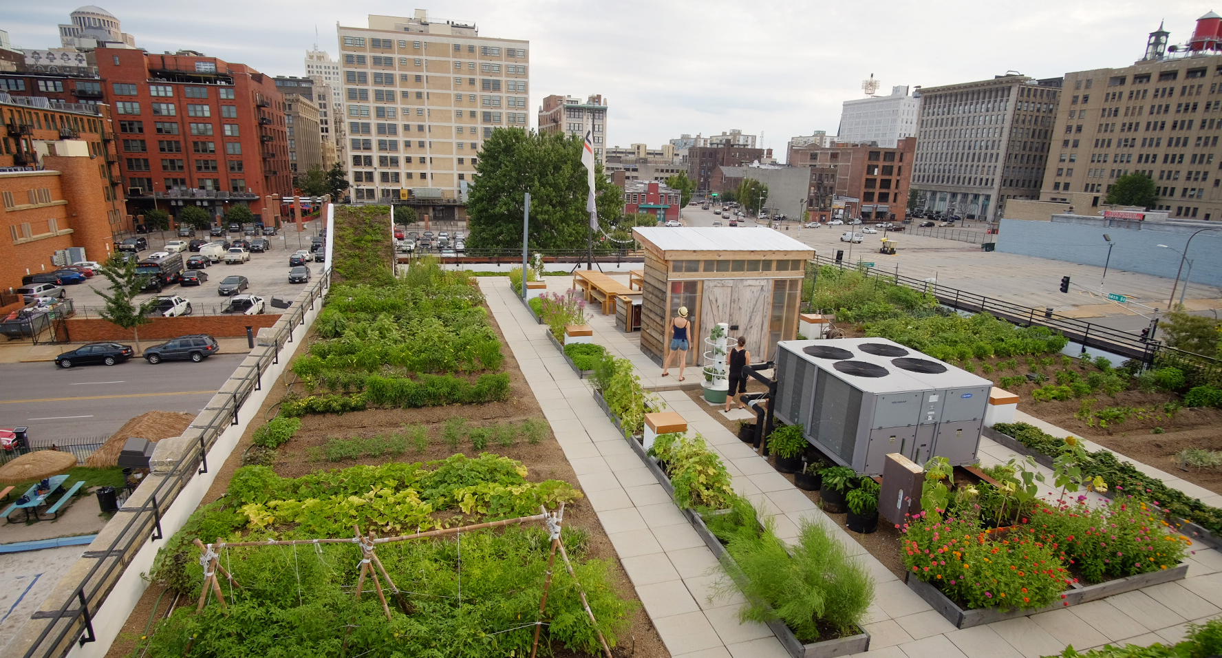 Food Roof Farm