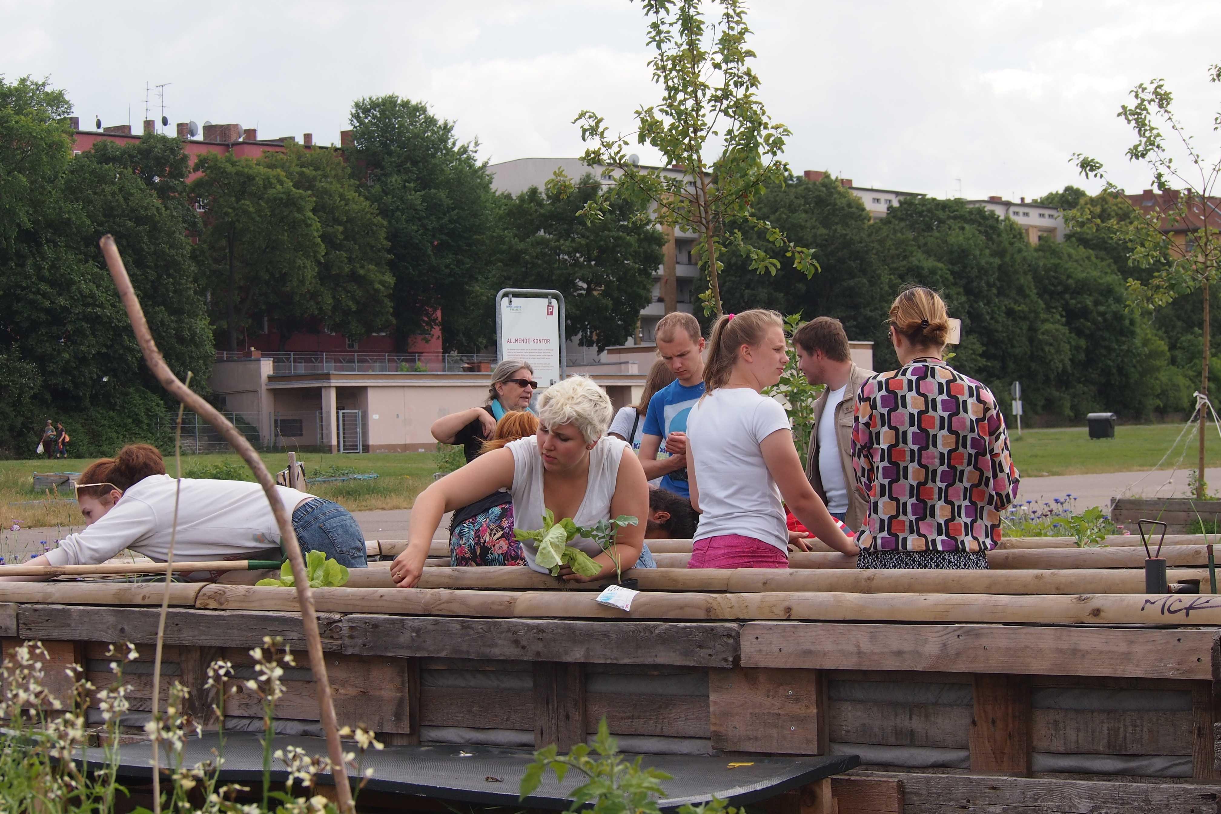Allmende-Kontor Community Garden