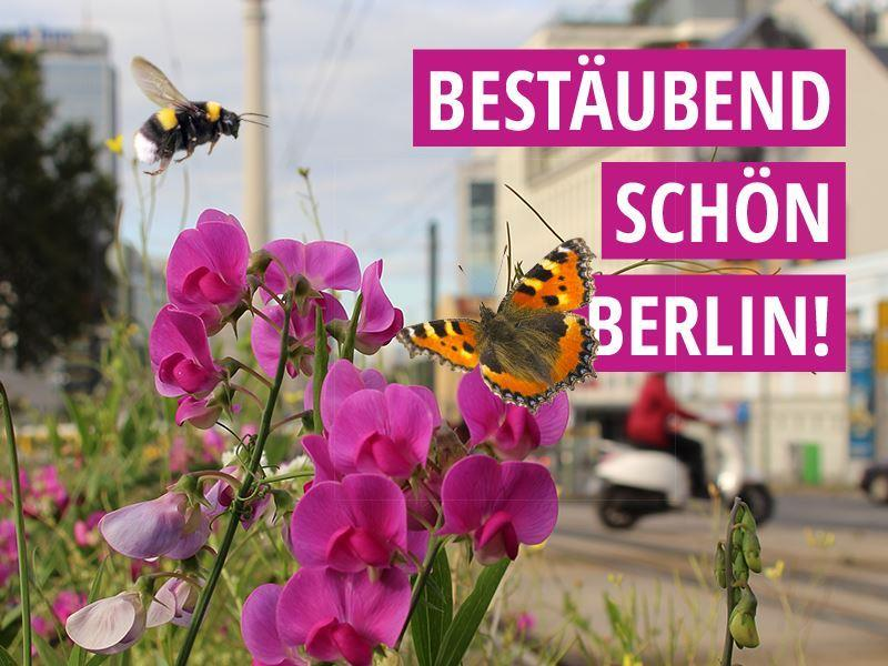 Bestäubend schön Berlin